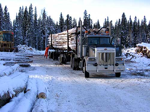 hauling-jan_06