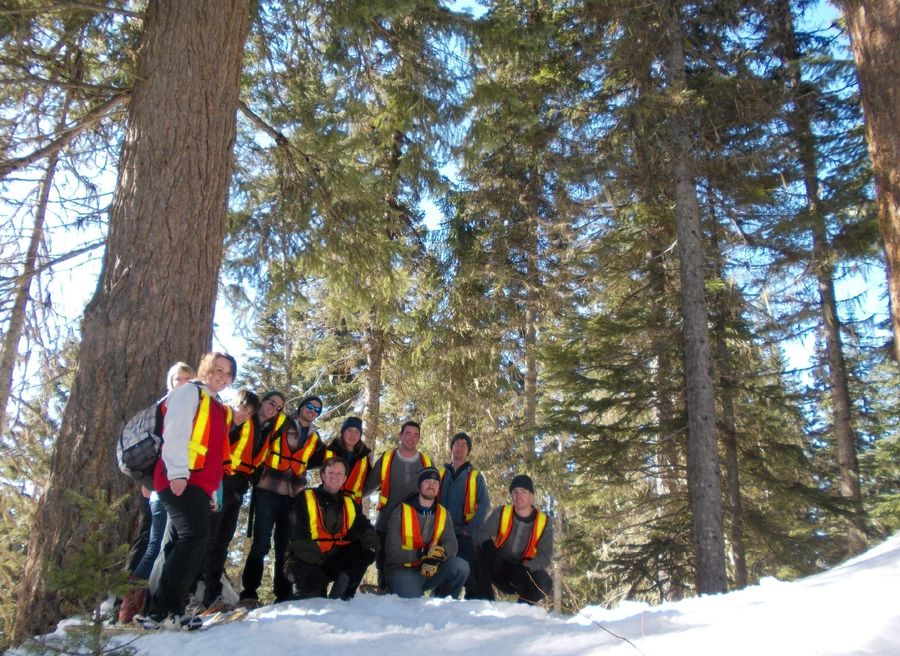 UNBCs Forestry 209: Silvics Class