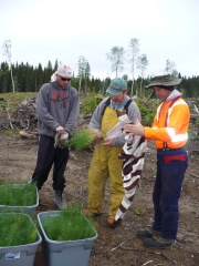 Mike Jull explains planting specifications to two of Senecas most experienced planters.
