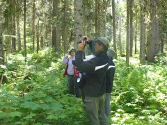 The group stops at an old growth forest site along the East Loop Trail.