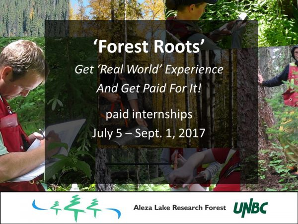 forestroots-promo-2017