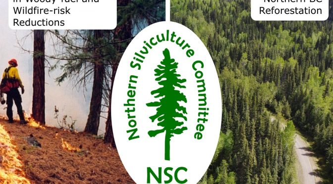2021 NSC Winter Webinars