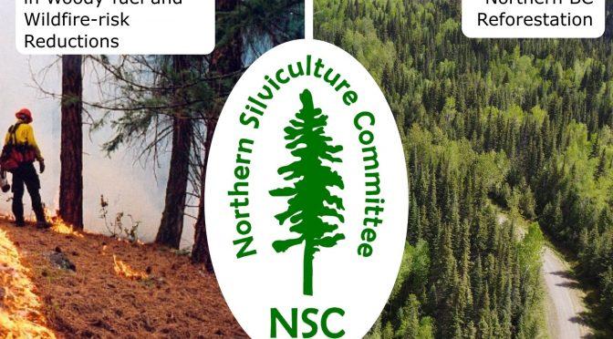 2021 NSC Winter Webinars